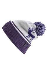 Patagonia 'Powder Down' Beanie