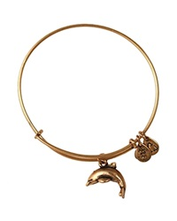 Alex And Ani Dolphin Bangle Rafaelian Gold