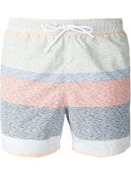 Lacoste Striped Swimming Shorts Multicolour