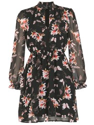 Pussycat Floral And Butterfly Printed Dress Black