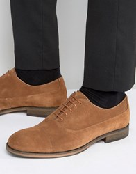 Selected Leather Oxford Shoes Tan