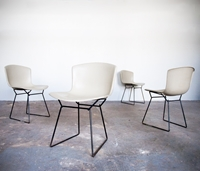 Shop Sit And Read Four Bertoia Fiberglass Chairs