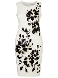 Windsmoor Mono Floral Placement Dress Multi Coloured