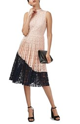 Topshop Women's Colorblock Pleated Lace Midi Dress