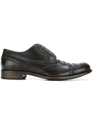 Dolce And Gabbana 'Taormina' Brogue Shoes Brown