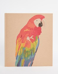 Paperchase Let's Squawk Parrot Medium Album Multi