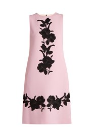 Dolce And Gabbana Floral Applique Wool Crepe Dress Light Pink
