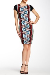 Felicity And Coco Printed Knit Dress Black