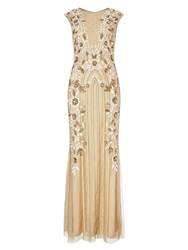 Phase Eight Minerva Flower Dress Nude