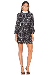 Alice Olivia Terisa Fit And Flare Lace Dress Black And White