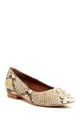 Donald J Pliner Adore Studded Flats Narrow Width Available Multi