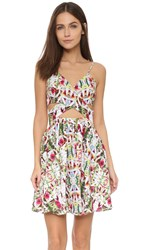 6 Shore Road Miraflores Dress Rainforest Floral