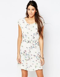 Pussycat London Belted Dress In Bird Print Off White