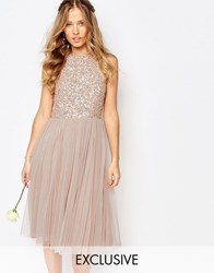 Maya High Neck Midi Tulle Dress With Tonal Delicate Sequins Mink Brown