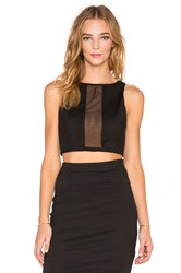 Tiger Mist See Through You Crop Top Black