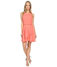 Adelyn Rae Fit And Flare Dress Bright Coral Women's Dress Gray