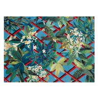 Christian Lacroix Canopy Turquoise Rug 200X280cm