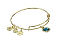 Alex And Ani December Birthstone Charm Bangle Rafaelian Gold Finish Bracelet