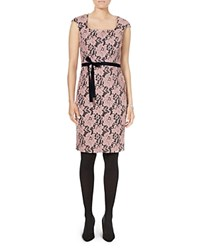 Phase Eight Emeline Lace Dress Navy Pink