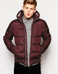 Brave Soul Padded Bomber Jacket With Hood Red