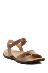 Sanita Catalina Claudia Snake Embossed Sandal Brown