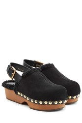 Alexander Mcqueen Suede And Shearling Clogs Black