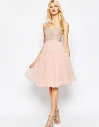 Needle And Thread Voluminous Tulle Embellished Dress Ballet Pink