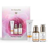 Dr. Hauschka Skin Care Dr Perfect Rose Skincare Gift Set