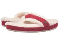 Acorn Thong Ragg Red Ragg Wool Women's Slippers