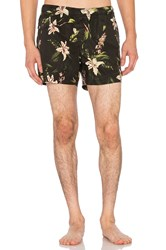 Deus Ex Machina Botanical Boardshort Black