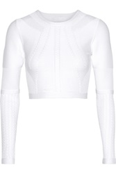 Cushnie Et Ochs Cropped Stretch Knit Top