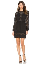 Greylin Aliston Lace Dress Black