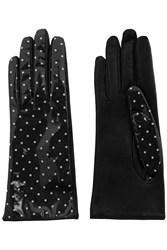 Dolce And Gabbana Polka Dot Coated Twill And Leather Gloves