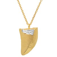Elisabeth Bell Jewelry Tyrannosaurus Rex Tooth Necklace Gold