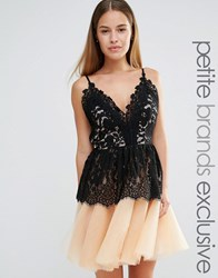 True Decadence Petite Lace Top Mini Prom Dress With Tulle Skirt Black Blush