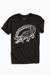 Urban Outfitters Catfish And The Bottlemen Tee Black