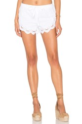 Blank Nyc Lace Short White