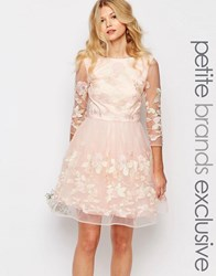 Chi Chi Petite Chi Chi London Petite Premium Allover Floral Embroidered Mini Prom Dress With Mesh Sleeve Pink Cream