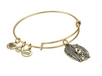 Alex And Ani Guardian Of Answers Charm Bangle Rafaelian Gold Finish Charms Bracelet