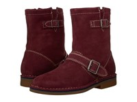 Hush Puppies Aydin Catelyn Wine Suede Women's Boots Burgundy