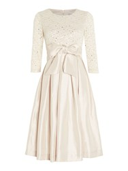 Eliza J Long Sleeve Fit And Flare Dress With Lace Champagne