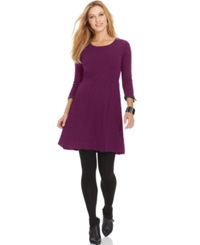 Spense Petite Pleather Trim Pleated A Line Sweater Dress