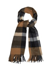 Max Mara Cashmere And Wool Fringed Scarf Brown Multi