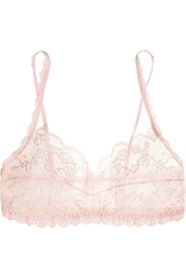 Hanky Panky Rose Garden Stretch Lace Soft Cup Bra