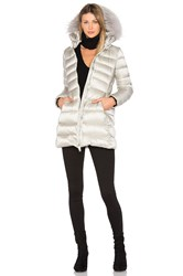 Add Down Coat With Asiatic Raccoon Fur Metallic Silver