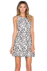 Greylin Bruna Floral Lace Dress White