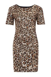 French Connection Leo Luxe Sequinned Dress Brown