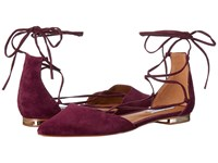 Steve Madden Sunshine Burgundy Suede Women's Flat Shoes