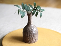 Small Brown Vase By Mushimegane Books Oen Shop