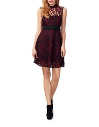 Rachel Roy Lace Sheer Fit And Flare Dress Red Black